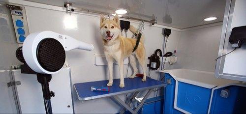Mobile dog grooming near me